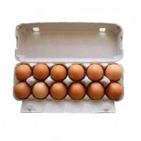 走地鸡鸡蛋(每打12个)